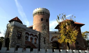 1.castelul tepes-hoinariromani