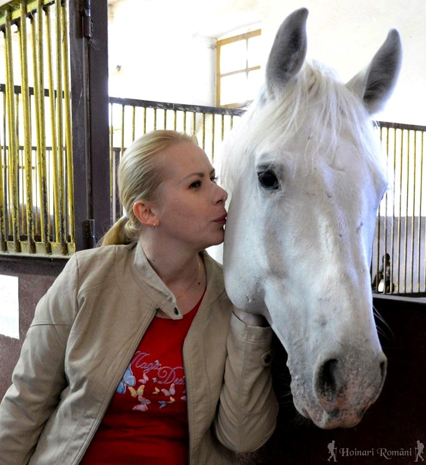 hoinariromani equestria