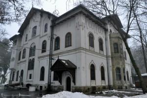 2 palatul stirbey -hoinariromani