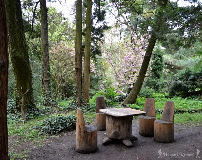 6 parc dendrologic simeria hoinariromani